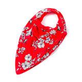 Bibble plus bandana cherry blossom - maat 4_